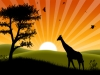 African-sunset_Wallpaper_uaa5y